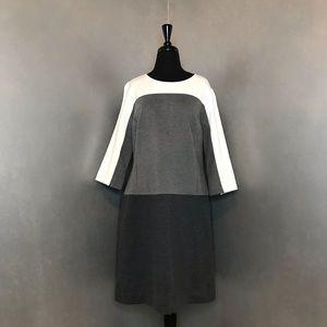 Ann Taylor Plus Size Color Blocked Dress -Size 14